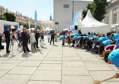 Danube Day 2015