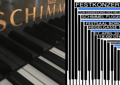 Schimmelkonzert Beitragsbild Plakat und Foto3