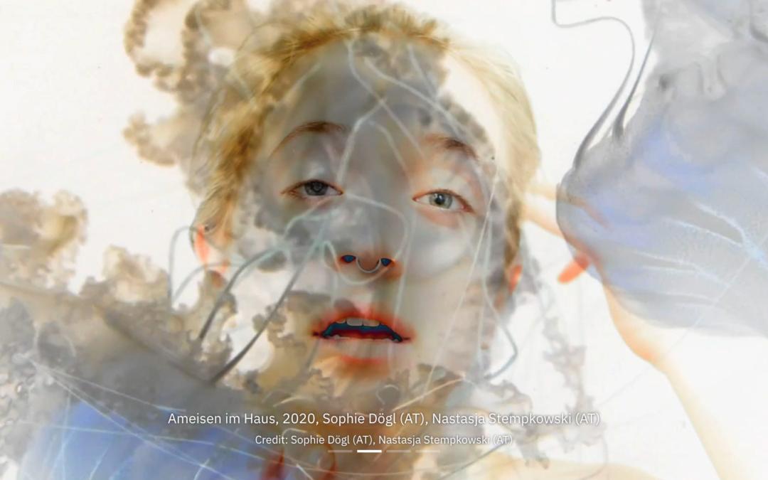 Ars Electronica – Anerkennungspreis für Schülerinnen der 8A
